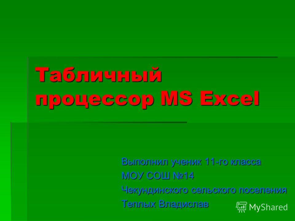 Табличный процессор MS Excel Выполнил ученик 11-го класса МОУ СОШ 14 Чекундинского сельского поселения Теплых Владислав