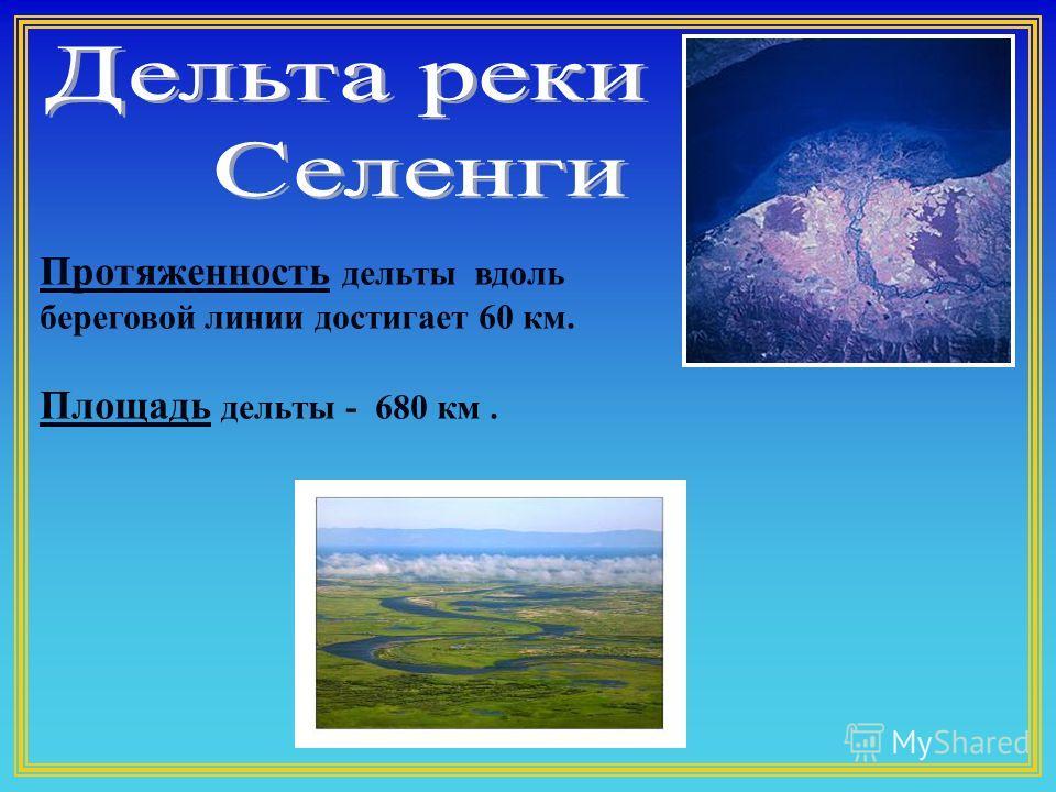 Протяженность дельты вдоль береговой линии достигает 60 км. Площадь дельты - 680 км.