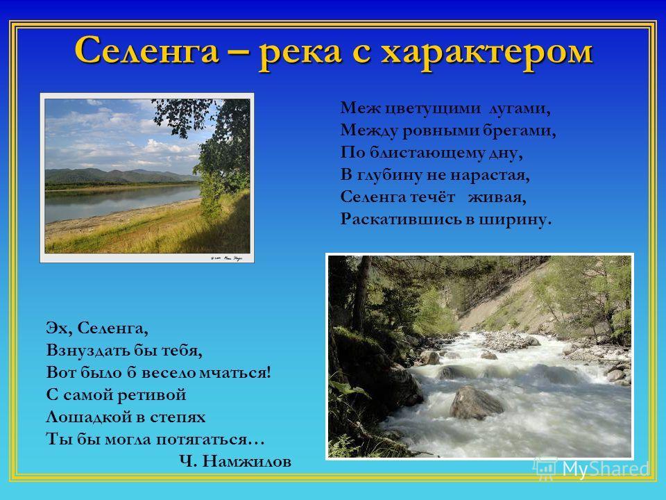 Селенга – река с характером Эх, Селенга, Взнуздать бы тебя, Вот было б весело мчаться! С самой ретивой Лошадкой в степях Ты бы могла потягаться… Ч. Намжилов Меж цветущими лугами, Между ровными брегами, По блистающему дну, В глубину не нарастая, Селен