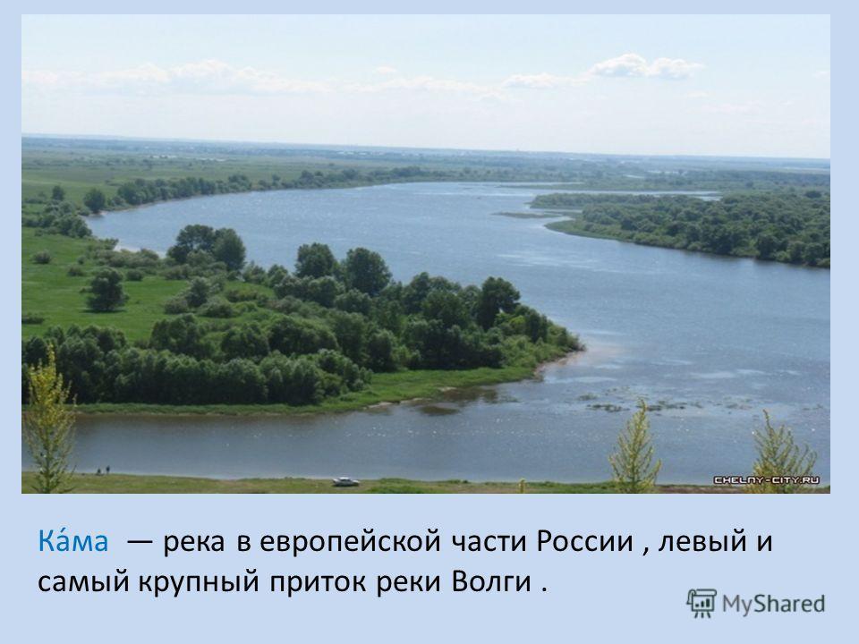 Ка́ма река в европейской части России, левый и самый крупный приток реки Волги.