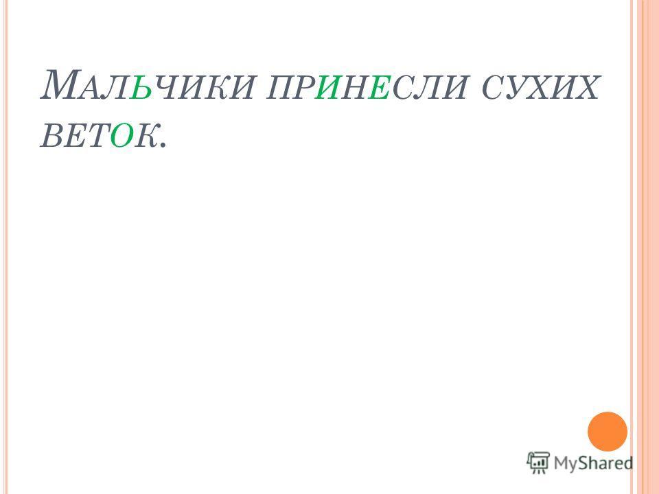 М АЛЬЧИКИ ПРИНЕСЛИ СУХИХ ВЕТОК.