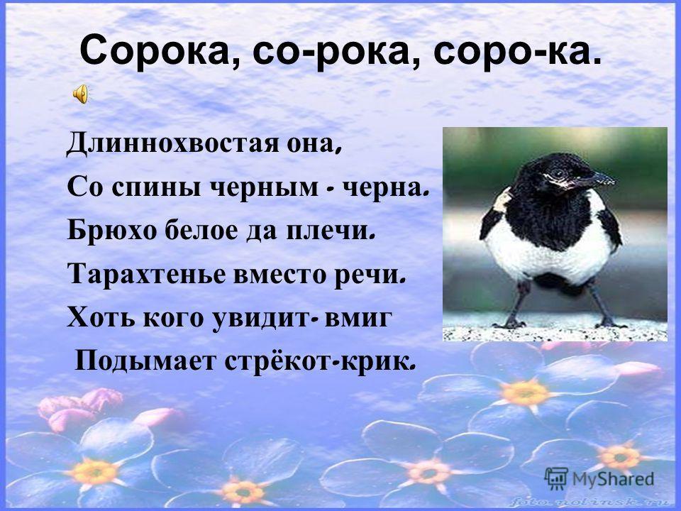Непоседа пёстрая, Птица длиннохвостая, Птица говорливая, Самая болтливая. Всех я за день навещу, Всё, что знаю, растр ищу ! Верещунья, белобока, А зовут её …
