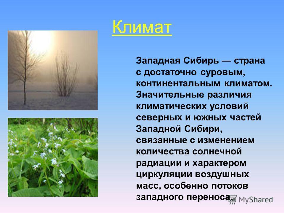 Климат. Западная Сибирь страна с достаточно суровым, континентальным климатом. Значительные различия климатических условий северных и южных частей Западной Сибири, связанные с изменением количества солнечной радиации и характером циркуляции воздушных