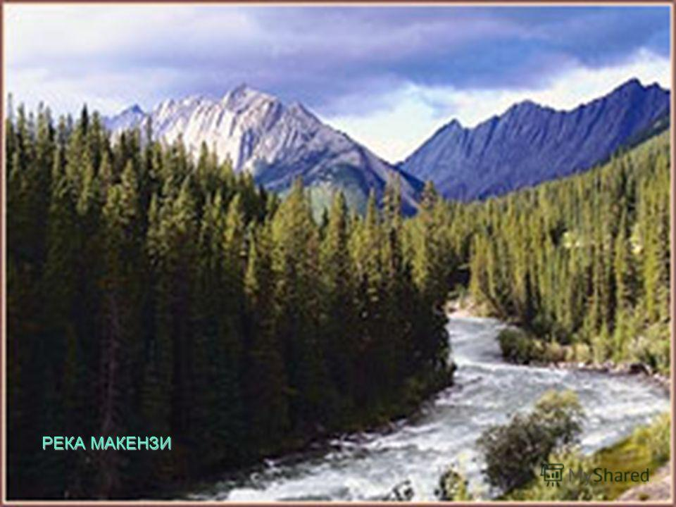 Река, вытекающая из Большого Невольничьего озера и впадающая в море Бофорта, получила название
