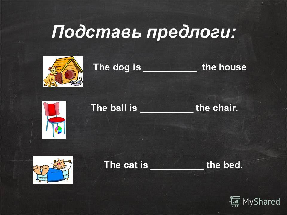 Подставь предлоги: The dog is __________ the house. The ball is __________ the chair. The cat is __________ the bed.