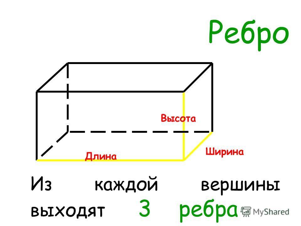 Ребро Из каждой вершины выходят 3 ребра Ширина Высота Длина