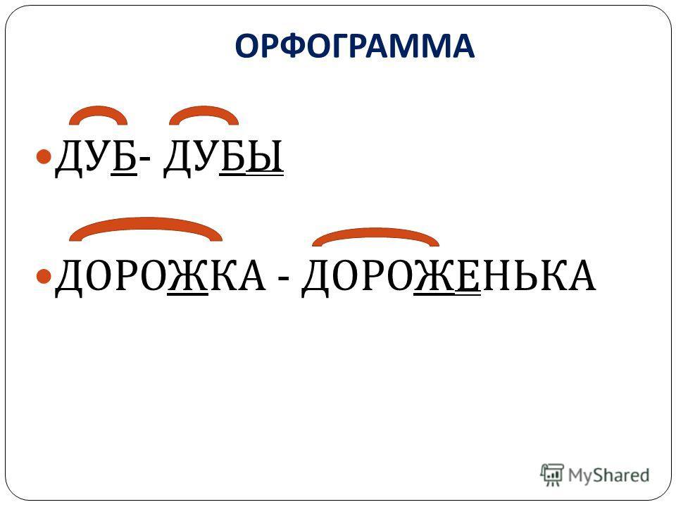 ОРФОГРАММА ДУБ - ДУБЫ ДОРОЖКА - ДОРОЖЕНЬКА