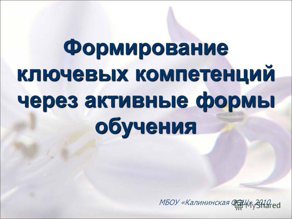 Формирование ключевых компетенций через активные формы обучения МБОУ «Калининская ООШ» 2010