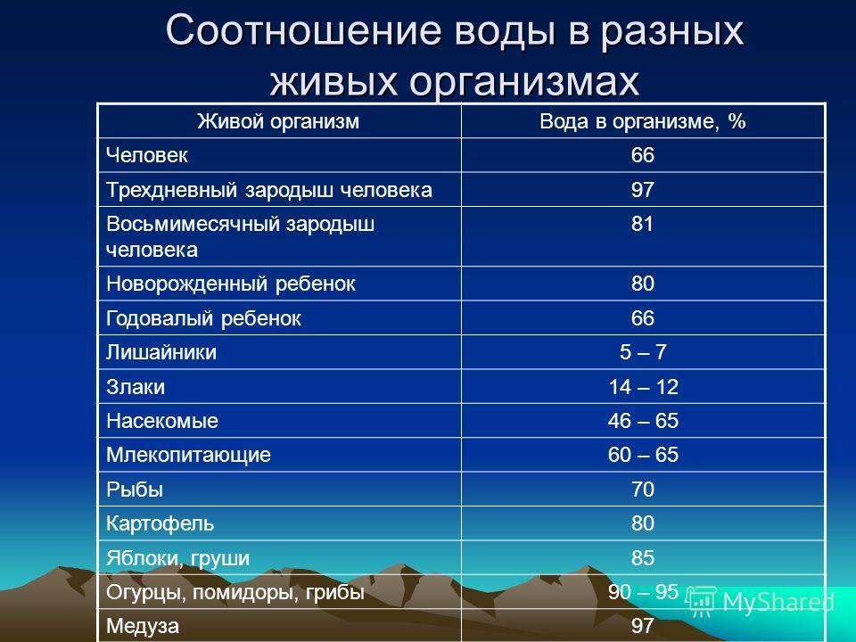 Соотношение воды в разных живых организмах Живой организм Вода в организме, % Человек 66 Трехдневный зародыш человека 97 Восьмимесячный зародыш человека 81 Новорожденный ребенок 80 Годовалый ребенок 66 Лишайники 5 – 7 Злаки 14 – 12 Насекомые 46 – 65