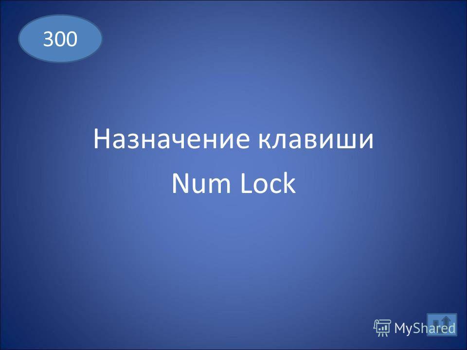 Какой символ вставляет в текст клавиша Enter 200