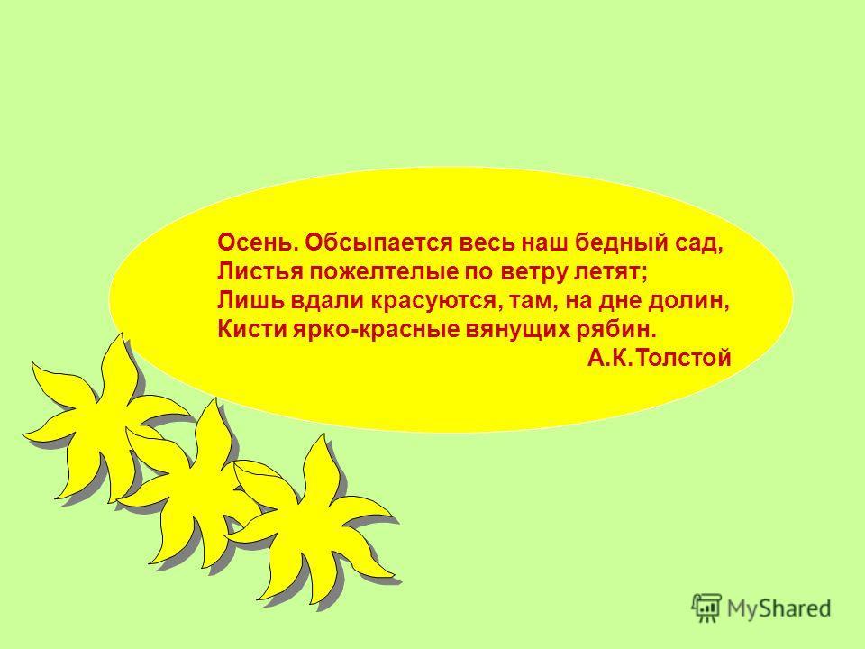 Осень. Обсыпается весь наш бедный сад, Листья пожелтелые по ветру летят; Лишь вдали красуются, там, на дне долин, Кисти ярко-красные вянущих рябин. А.К.Толстой