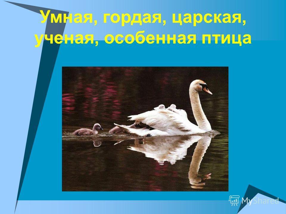 Умная, гордая, царская, ученая, особенная птица