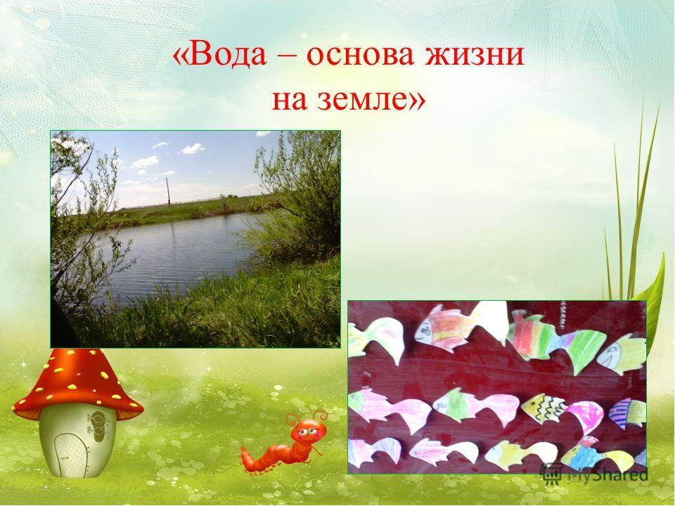 «Вода – основа жизни на земле»
