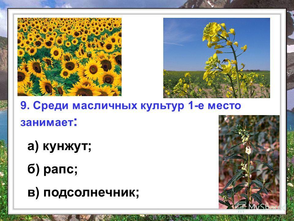 9. Среди масличных культур 1-е место занимает : а) кунжут; б) рапс; в) подсолнечник;
