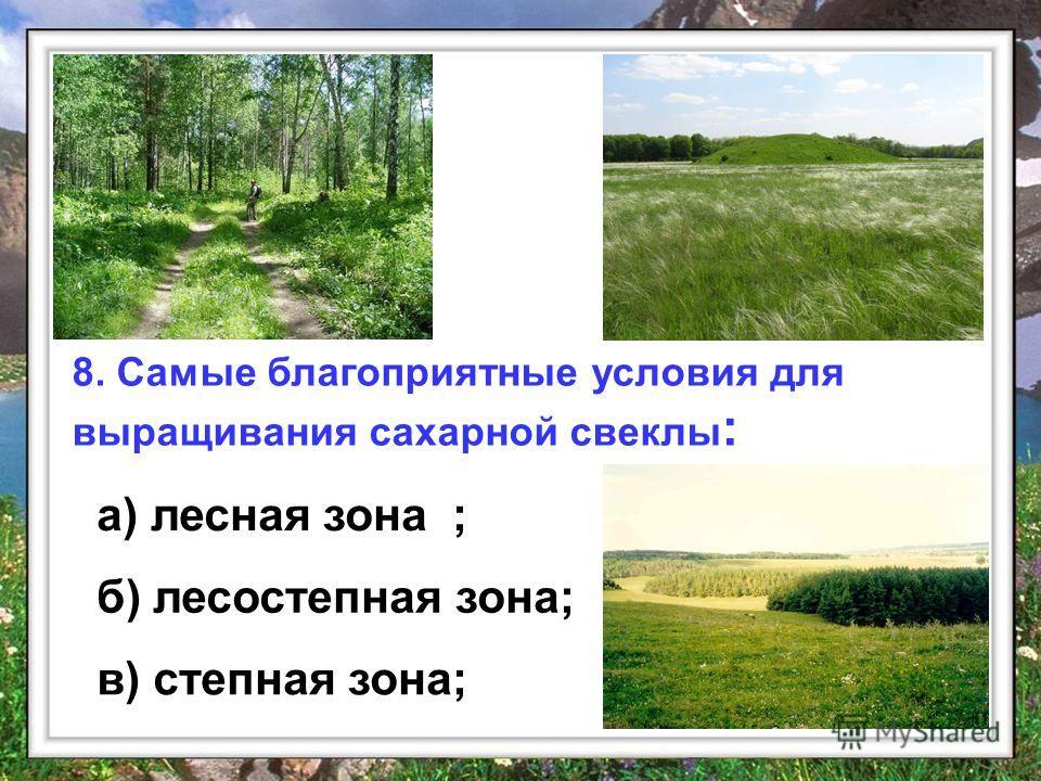 8. Самые благоприятные условия для выращивания сахарной свеклы : а) лесная зона ; б) лесостепная зона; в) степная зона;