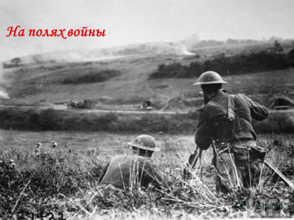 На полях войны