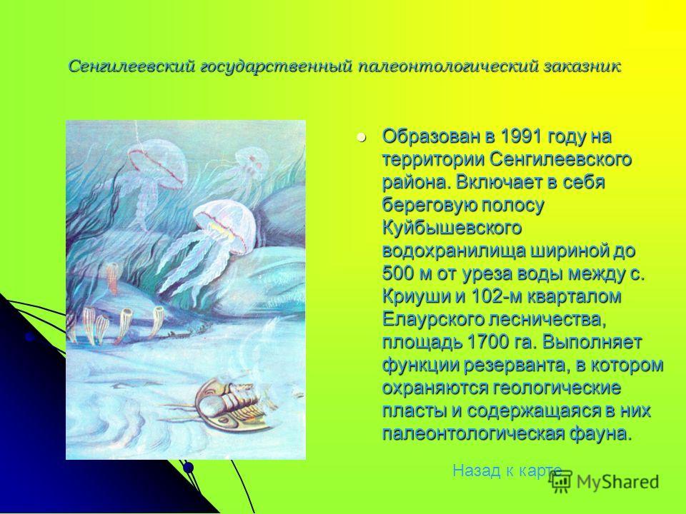 Сенгилеевский государственный палеонтологический заказник Образован в 1991 году на территории Сенгилеевского района. Включает в себя береговую полосу Куйбышевского водохранилища шириной до 500 м от уреза воды между с. Криуши и 102-м кварталом Елаурск