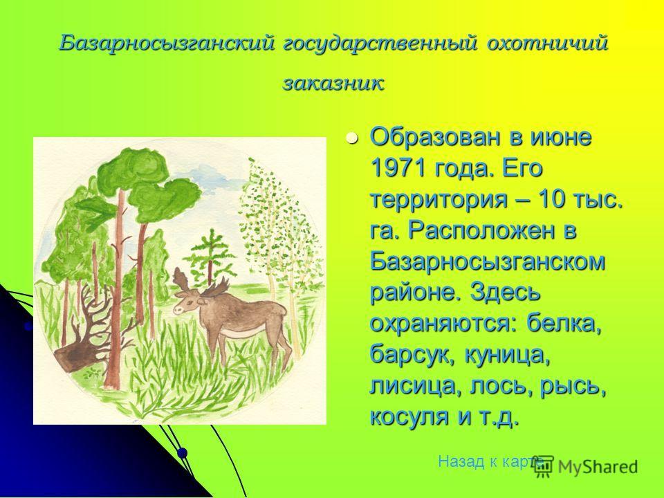 Базарносызганский государственный охотничий заказник Образован в июне 1971 года. Его территория – 10 тыс. га. Расположен в Базарносызганском районе. Здесь охраняются: белка, барсук, куница, лисица, лось, рысь, косуля и т.д. Образован в июне 1971 года