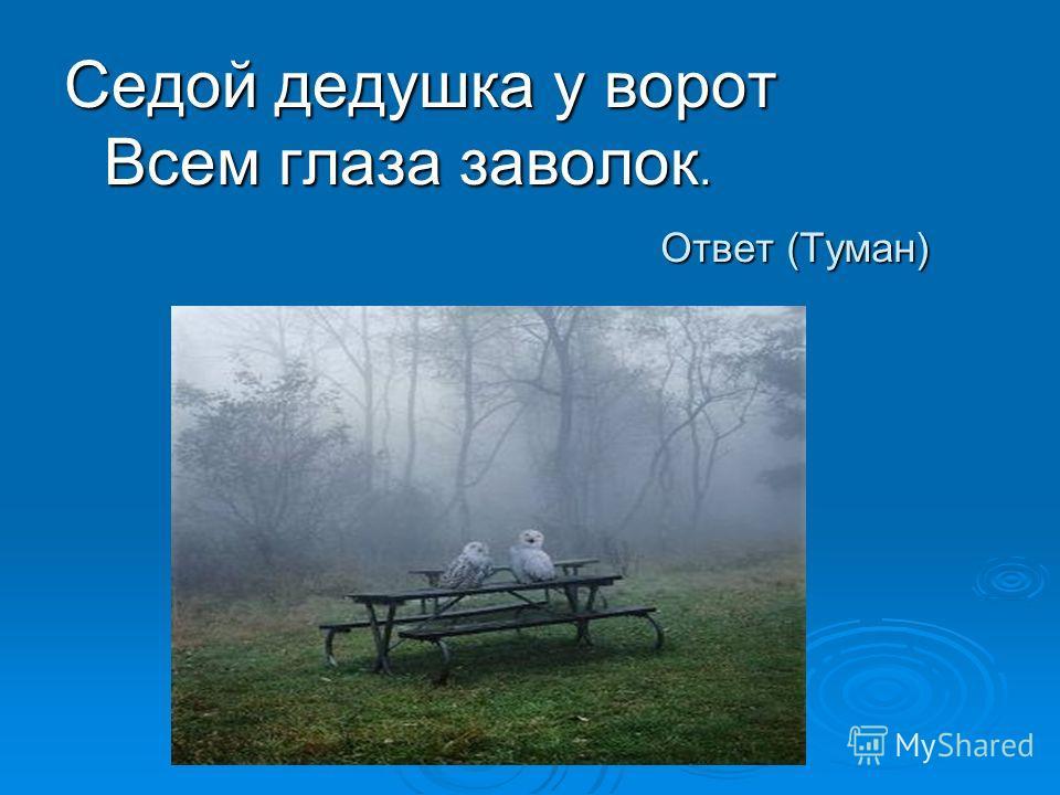 Ответ (Туман) Седой дедушка у ворот Всем глаза заволок.