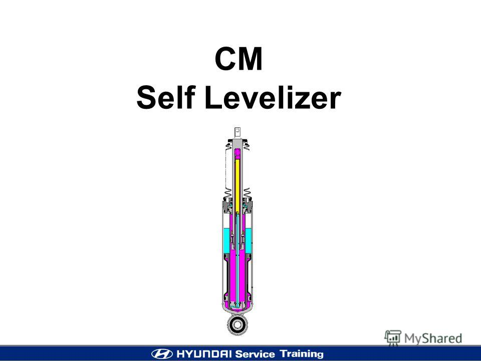 SELF-LEVELIZER 1 CM Self Levelizer