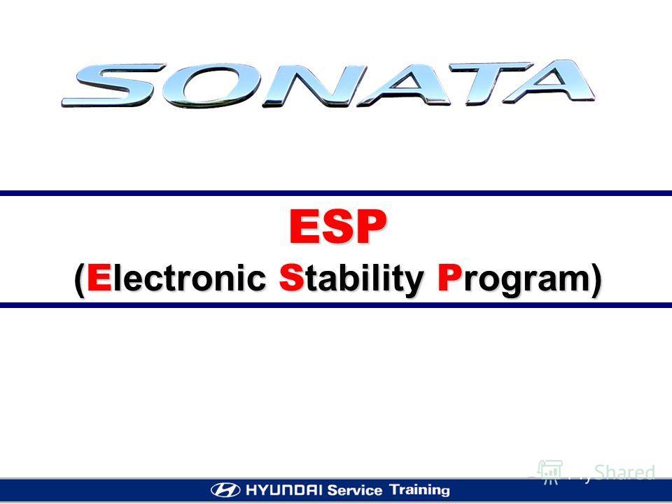 ESP ( E lectronic S tability P rogram)