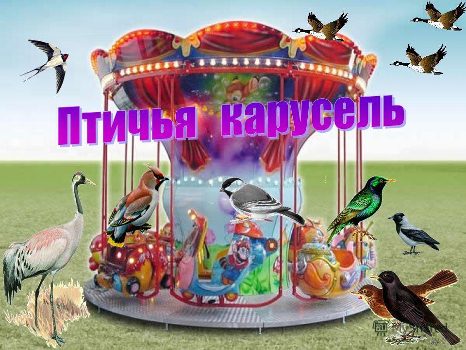знакомства без регистрации бесплатно по ростовской обл