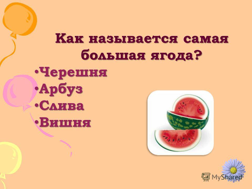 Как называется самая большая ягода? Черешня Черешня Арбуз Арбуз Слива Слива Вишня Вишня