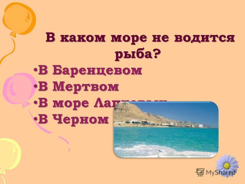 В каком море не водится рыба? В каком море не водится рыба? В Баренцевом В Баренцевом В Мертвом В Мертвом В море Лаптевых В море Лаптевых В Черном В Черном