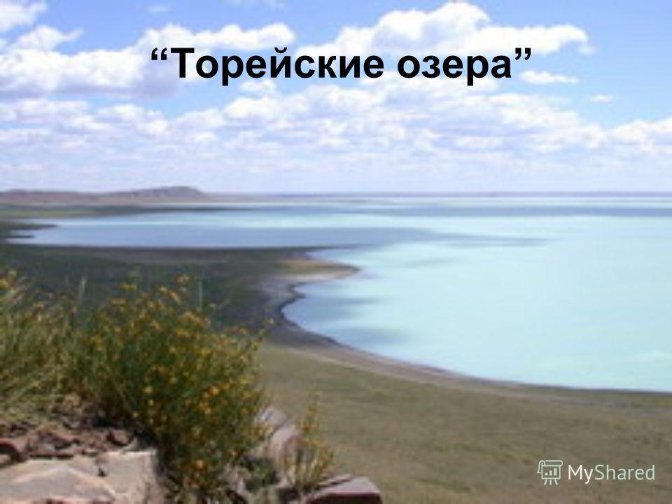 Торейские озера