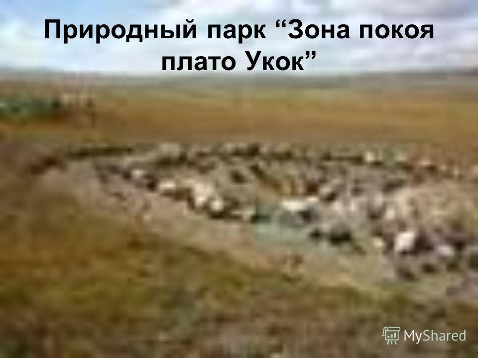 Природный парк Зона покоя плато Укок