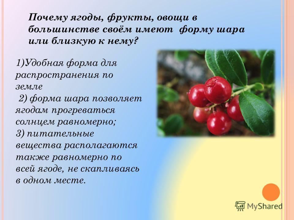1)Удобная форма для распространения по земле 2) форма шара позволяет ягодам прогреваться солнцем равномерно; 3) питательные вещества располагаются также равномерно по всей ягоде, не скапливаясь в одном месте. Почему ягоды, фрукты, овощи в большинстве
