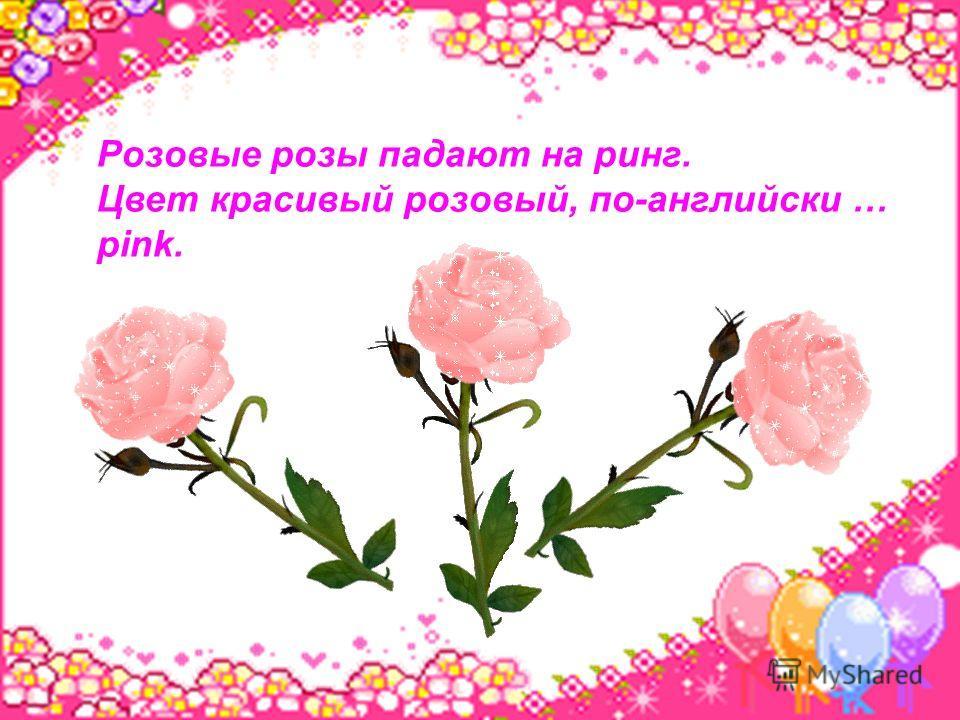 Розовые розы падают на ринг. Цвет красивый розовый, по-английски … pink.