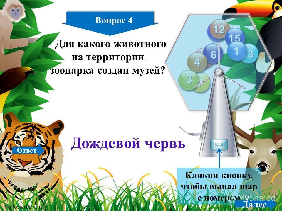 ProPowerPoint.ru 4 14 2 11 12 13 15 8 7 6 4 3 1 Кликни кнопку, чтобы выпал шар с номером Вопрос 4 Далее Для какого животного на территории зоопарка создан музей? Дождевой червь Ответ