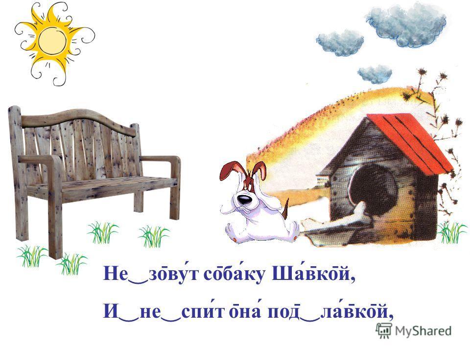 Не со ̄ вут со ̄ баку Шав ̄ ко ̄ й, И не спит о ̄ на под ̄ лав ̄ ко ̄ й,