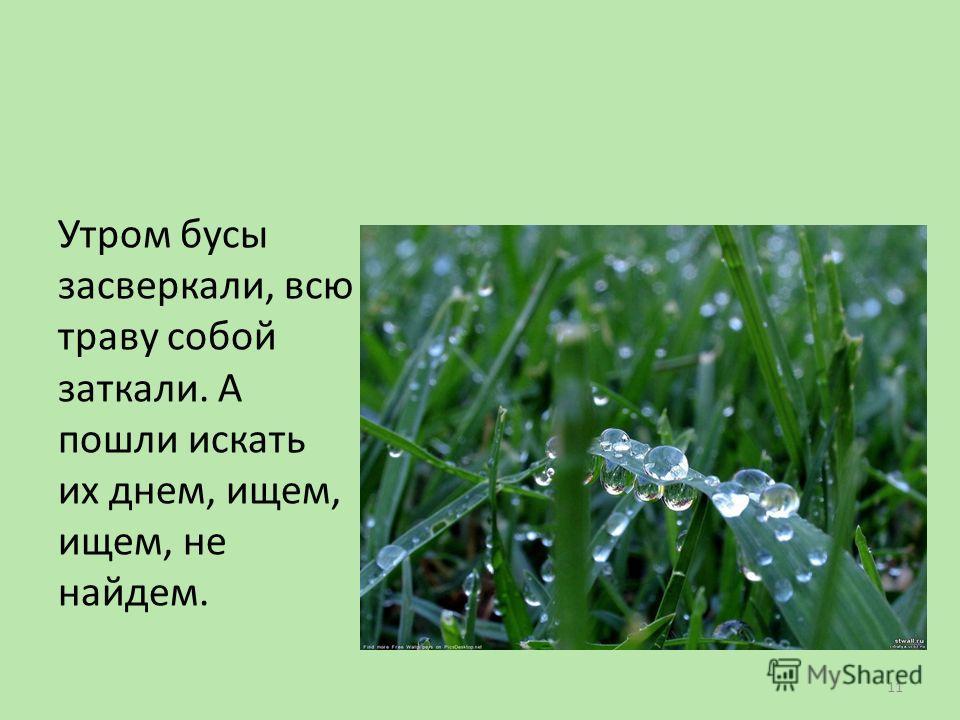 Утром бусы засверкали, всю траву собой заткали. А пошли искать их днем, ищем, ищем, не найдем. 11