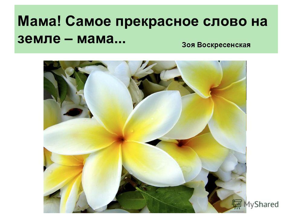 Мама! Самое прекрасное слово на земле – мама... Зоя Воскресенская