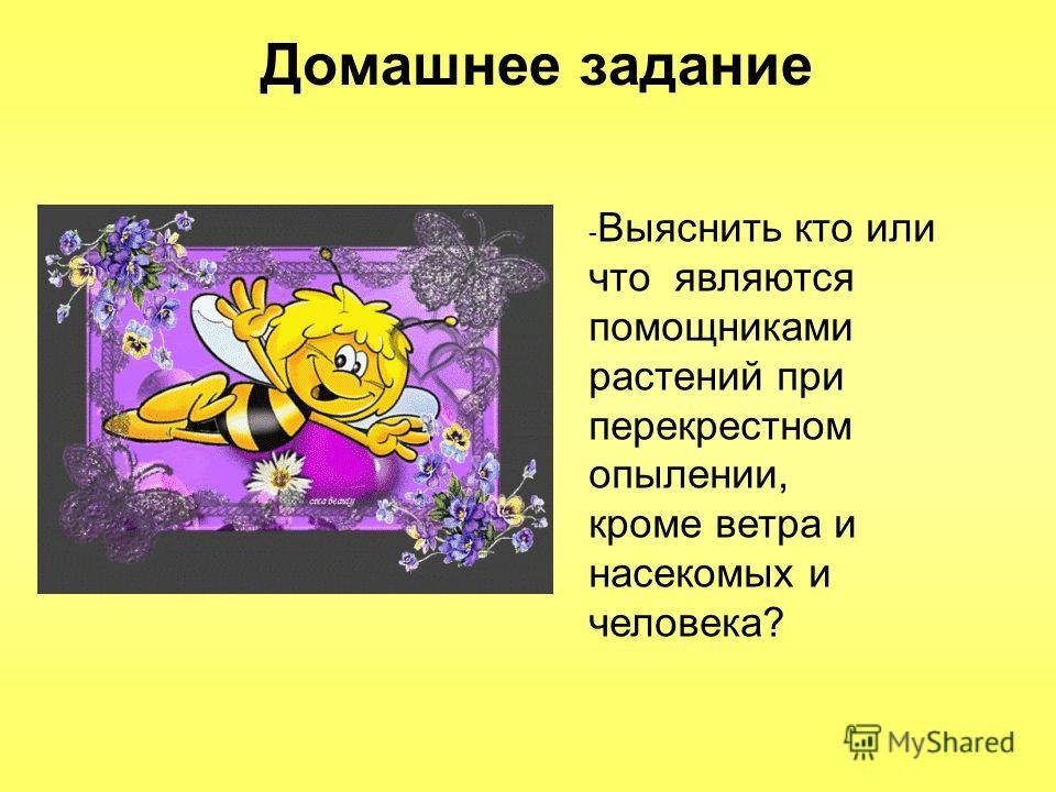 Домашнее задание - Выяснить кто или что являются помощниками растений при перекрестном опылении, кроме ветра и насекомых и человека?