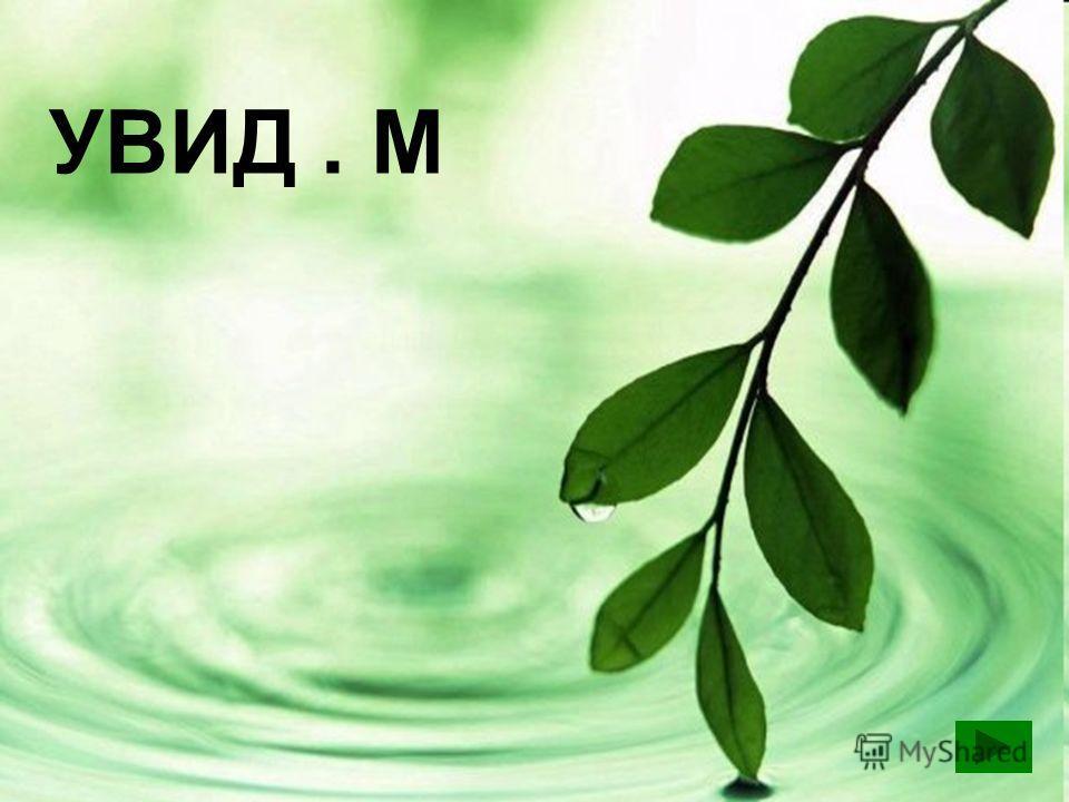УВИД. М УВИДИМ