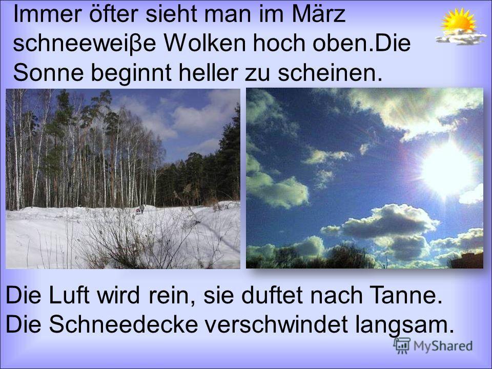 Immer öfter sieht man im März schneeweiβe Wolken hoch oben.Die Sonne beginnt heller zu scheinen. Die Luft wird rein, sie duftet nach Tanne. Die Schneedecke verschwindet langsam.