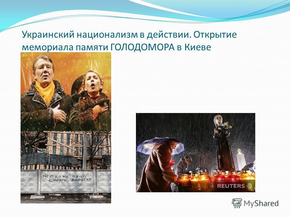 Украинский национализм в действии. Открытие мемориала памяти ГОЛОДОМОРА в Киеве