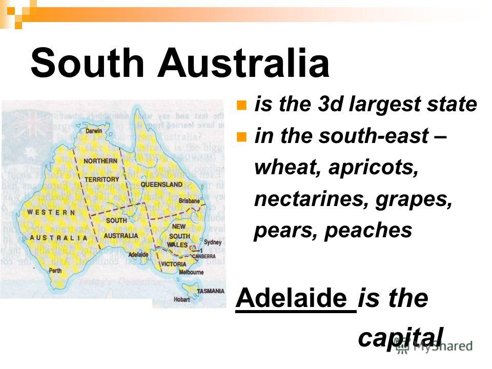 South Australia is the 3d largest state in the south-east – wheat, apricots, nectarines, grapes, pears, peaches Adelaide is the capital