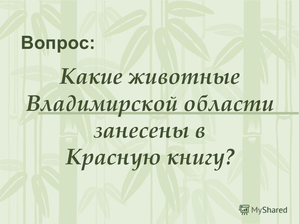 Какие животные Владимирской области занесены в Красную книгу? Вопрос: