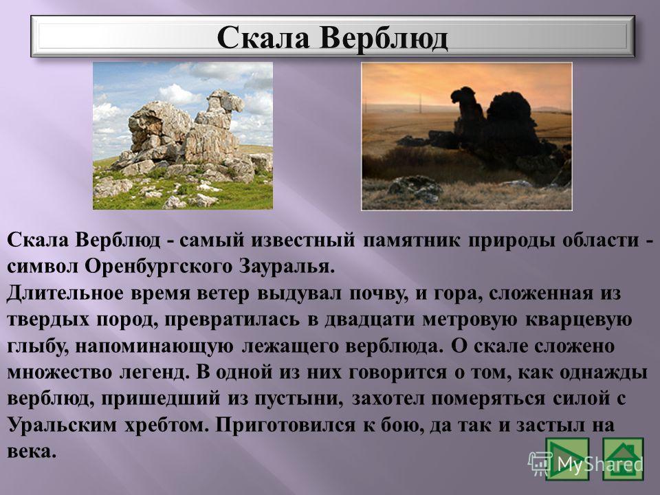 Скала Верблюд - самый известный памятник природы области - символ Оренбургского Зауралья. Длительное время ветер выдувал почву, и гора, сложенная из твердых пород, превратилась в двадцати метровую кварцевую глыбу, напоминающую лежащего верблюда. О ск