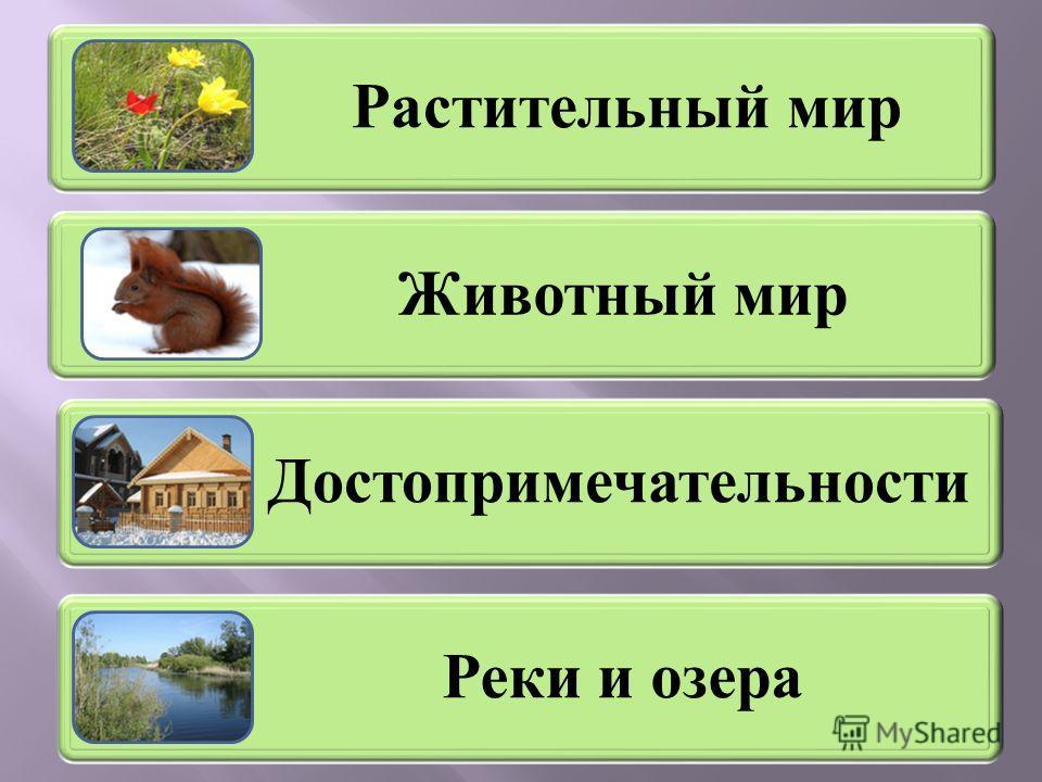 Растительный мир Животный мир Достопримечательности Реки и озера