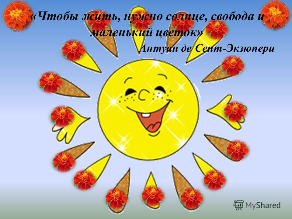 « Чтобы жить, нужно солнце, свобода и маленький цветок» Антуан де Сент-Экзюпери