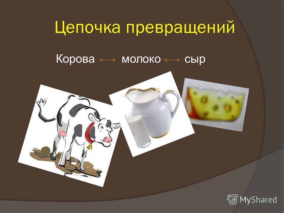 Цепочка превращений Корова молоко сыр