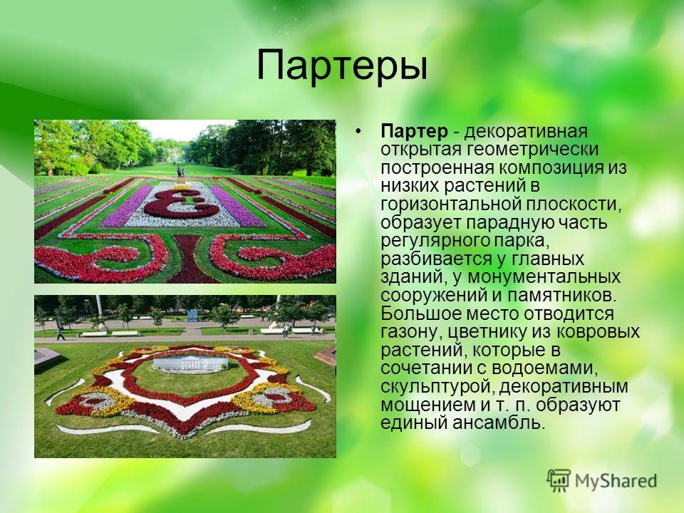 Партеры Партер - декоративная открытая геометрически построенная композиция из низких растений в горизонтальной плоскости, образует парадную часть регулярного парка, разбивается у главных зданий, у монументальных сооружений и памятников. Большое мест