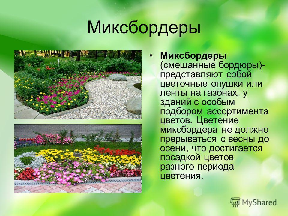 Миксбордеры Миксбордеры (смешанные бордюры)- представляют собой цветочные опушки или ленты на газонах, у зданий с особым подбором ассортимента цветов. Цветение миксбордера не должно прерываться с весны до осени, что достигается посадкой цветов разног