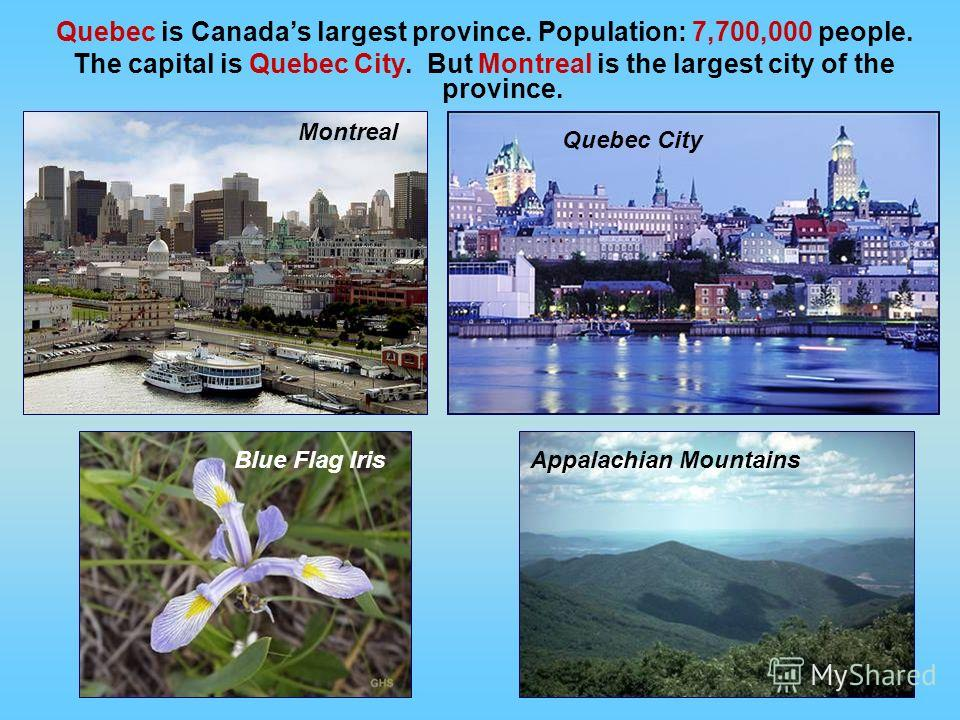 Quebec is Canadas largest province. Population: 7,700,000 people. The capital is Quebec City. But Montreal is the largest city of the province. Blue Flag Iris Montreal Quebec City Appalachian Mountains