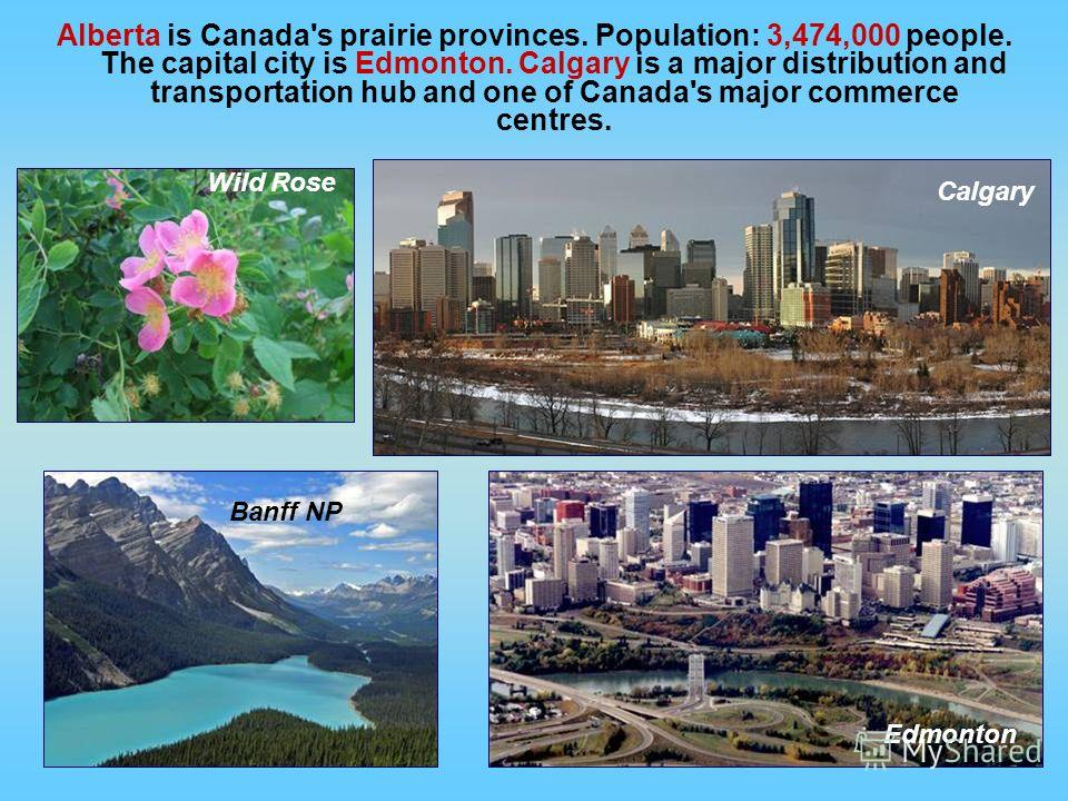 Alberta is Canada's prairie provinces. Population: 3,474,000 people. The capital city is Edmonton. Calgary is a major distribution and transportation hub and one of Canada's major commerce centres. Banff NP Wild Rose Edmonton Calgary